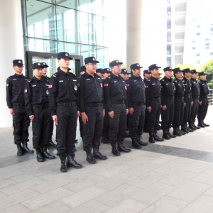 vxichina维音中国bwin中国注册守护服务合作