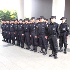 维音中国西部中心翼虎特勤队